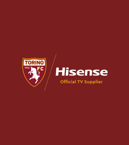 Official TV Supplier Torino Football Club